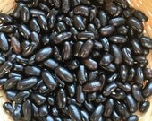 Cherokee Trail of Tears - Bean - Heirloom Garden Seed