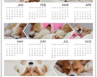Vertical 8 x 10 Vertical Mochi The Corgi Newborn Puppy Calendar