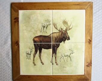 Moose, framed tile, framed tile mural, tile mural, moose, buck, wildlife, decorative tile, wall tile, wall decor, wall art, backsplash, tile