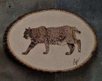 Wood-Burning: Slinking Bobcat