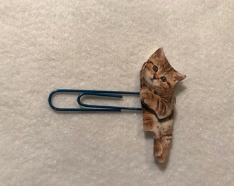 Laying down kitten planner clip