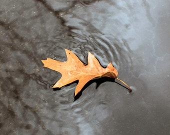 Rippling Leaf