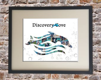 Discovery Cove Digital Collage
