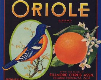 Oriole Brand Oranges Crate Label