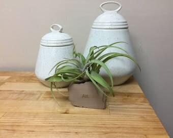 Atlanta Tiny Planter