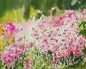 Wild Chrysanthemums