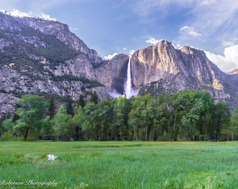 Meadow view of Yosemite Falls Wall Art Print -- Fine Art landscape photography , Forest, Trees, Waterfall Home Decor, HeatherRobersonPhoto