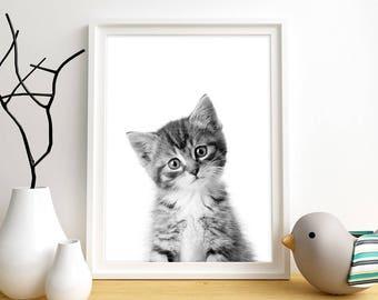 Kitten Print, Cat Wall Art, Baby Animal Wall Art, Nursery Decor, Kitten Printable, Instant Digital Download, Black & White Print, Kitten Art