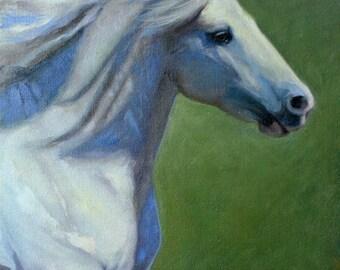 Original Equine Oil Painting