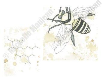 Bee Fine Art | Giclée Print