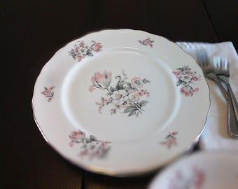 Canonsburg Serenity Dinner Plates - Set of 4