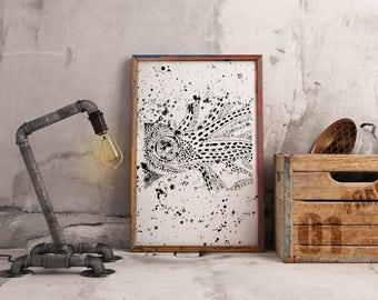 Black and White Squid Print.