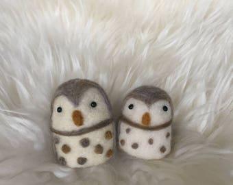 Little Owl Friends