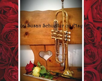 Lovely Original Flute Trumpet and Roses Still-Life Photograph