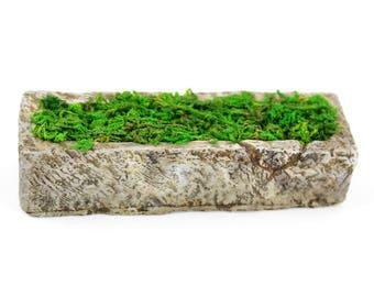 "Hedge Stone with Moss 3"" x .75"" x .75 - Resin - Miniature Dollhouse Fairy Garden"