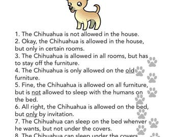Chihuahua's House Rules