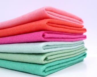 CACTUS Colours Felt Pack