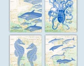 Dolphins, Octopus, Sea horses, Marine mammals Print, Octopus Art, Nursery decor, Playroom decor, beach cottage decor, educationsl sea life