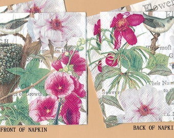 PN079 Paper Napkins by Michel Design Works ~ 5x5 or 4.5 x 8 ~ Birds Pink Flowers  Set of 4