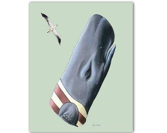 Sperm Whale art print 8x10