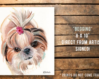 Fine art Print from original watercolor by Redstreake, shih Tzu dog puppy  2 sizes