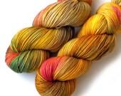 Hand Dyed Yarn Handdyed Merino Cashmere Nylon Sock Yarn - Golden Orchard