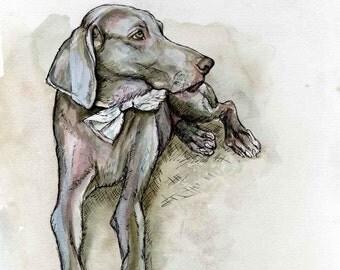 Weimaraner Dog MIS-PRINT