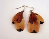 Natural Feather earrings short pheasant for fall