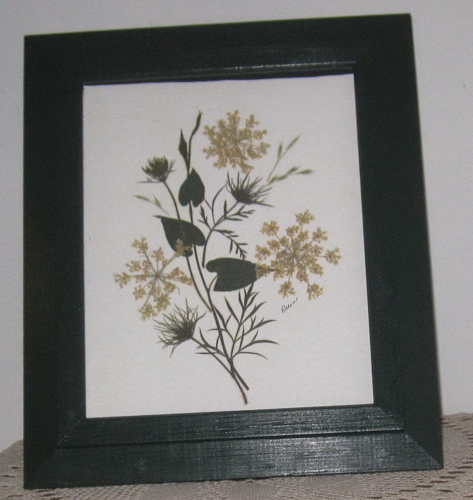 pressed queen annes lace design 8x10 in 11x13 green or gold wood frame