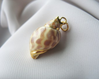 """Conch Shell Pendant, Gold Accent, Spiral Shell, Real Shell, Gold Spiral, 1.25"""""""