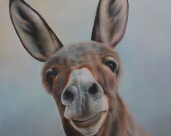 SAM DOLMAN Donkey Animal Limited Edition Print