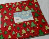 Ready Set Snow layer cake - me and my sister - Christmas - Winter OOP VHTF