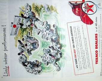 1955 Texaco Ad Dalmatian Puppies on Water, Skating Today Sign, Magazine Print Page, Puppies Swimming, Artist Keith Ward, Puppies Swimming
