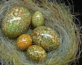 Magick Marbled Egg Collection: Duck, Chicken, and Quail Eggs For Your Basket