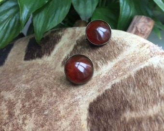 Amber clip on Earrings - round Dark red brown Baltic amber button earrings