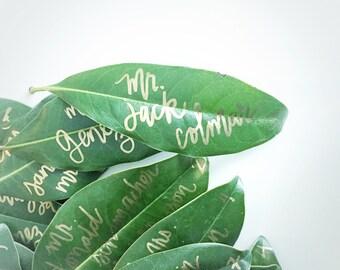 Magnolia Leaf Place Cards / REAL Leaf Escort Cards / Magnolia Leaves / Leaves for Outdoor Wedding / Natural Wedding Escort Card /