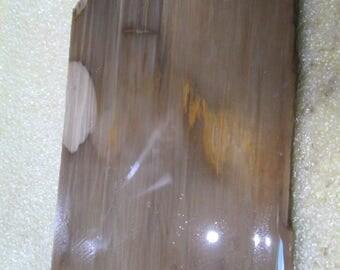 Dark Brown Petrified Wood Lapidary Slab Free Form Wrap Cut It
