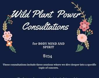 Wild Plant Power Consultations