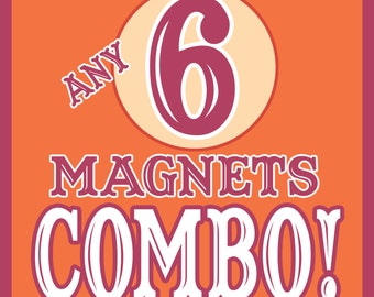 ANY 6 Magnets COMBO!