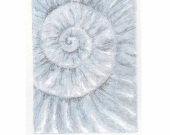 Original ammonite fossil zinc etching no.87 with mixed media jurassic Dorset coast fossil spiral fossil ammonites golden section