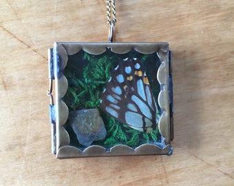 Terrarium Locket: Butterfly Wing