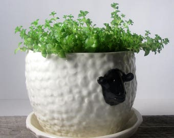 Sheep planter with overflow saucer Ready to ship Mother's Day