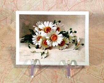 Flower Magnet - Daisies Fridge Magnet - Repro Catherine Klein Vintage Style