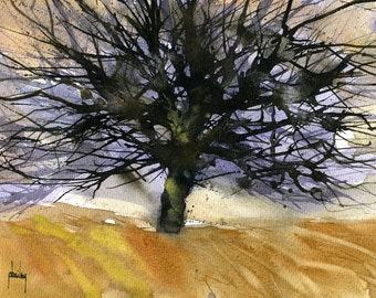Original watercolour tree painting - Large black oak