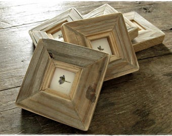 Line of Lavenders {{}} Preserved in Rustic Frames