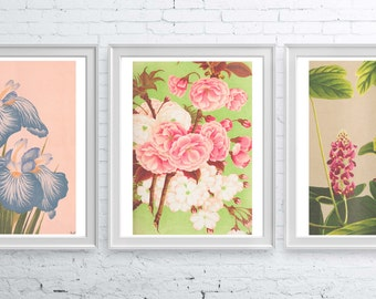SALE This selection of Three A3 sized posters ONLY 30 dollars, art offer, Art set of 3, Floral Wall art, Dotted delicate flowers SET008