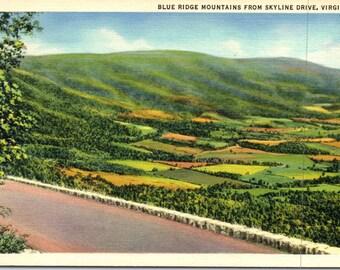Skyline Drive, Blue Ridge Mountains, Virginia - Vintage Postcard - Postcard - Unused (X)