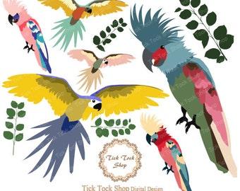 Parrot Cockatoo high quality SET - (12x12inch) Clip Art