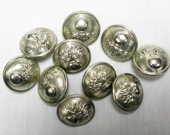 10 French Silvered Coat Buttons, Pompier Button, Gendarmarie Button, Military Button, Buttons, Silver Buttons, Flaming Bomb Button (360F)