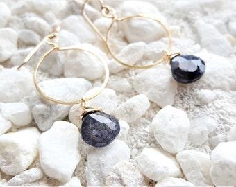 14k Gold filled Labradorite Circles Earrings
